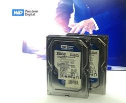 Жесткий диск 250 Гб Western Digital Caviar Blue WD2500AAJS